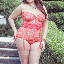 Gorgeous Bustier in Plus Sizes