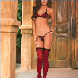 Plus Size Bra & Thigh High Set