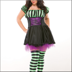 Miss Witchy Poo - Plus Size Costume